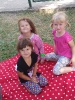 Pożegnalny piknik u Smerfów-4